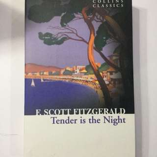 Scott Fitzgerald's Tender is the Night