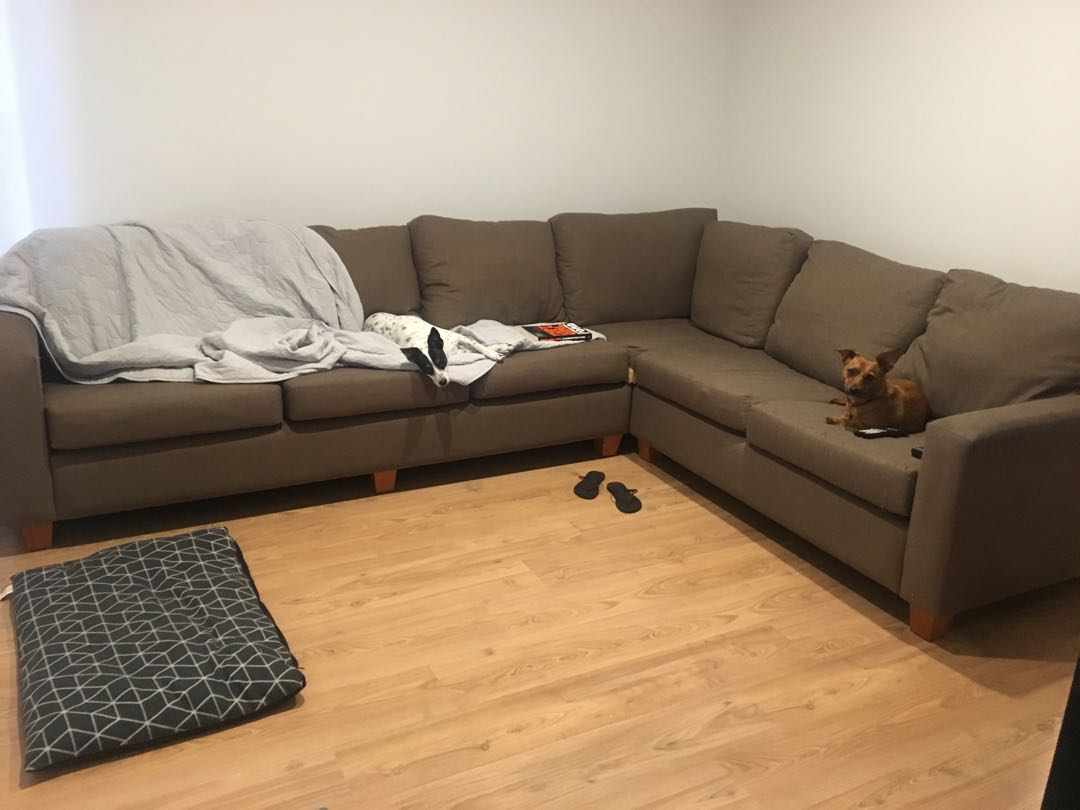 Couch free to good home!