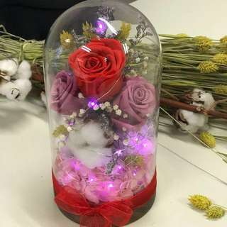 Forever Love ( Preserved Flower) inclusive of fairy lights