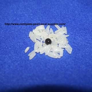 1 Black Centipede Pearl Amulet (蜈蚣珍珠)