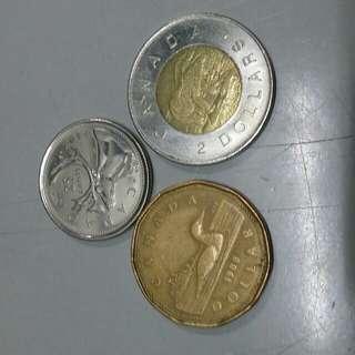 大量加拿大硬幣(可散買)
