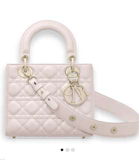 Dior lady small size