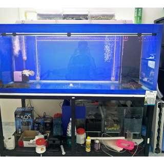 5Feet Fish Tank