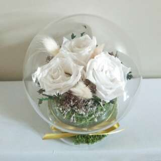 White Eternal Rose in Glass globe