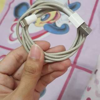 Iphone Cable charger