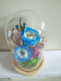 Austin Rose in glass jar