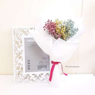 Dried Flower 🌼🌸 Colors V