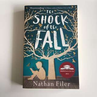 The Shock of the Fall *
