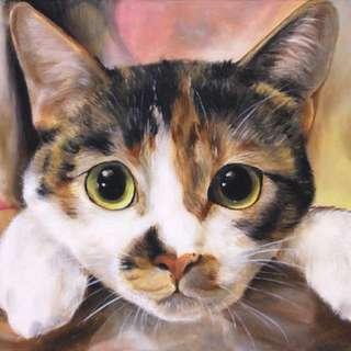 寵物油畫 教畫 學畫 教學 貓貓