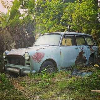 Fiat wagon 1100d