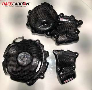 Carbon Fibre Engine Crash Savers for BMW S1000RR' 09-17