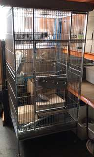 High grade stainless stain parrot cage