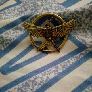 Pin hunger games