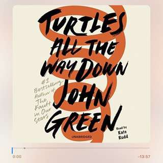 Turtles All The Way Down Audiobook