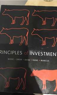 Principles of investment