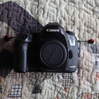 Canon 5D Mark iii SC1K only