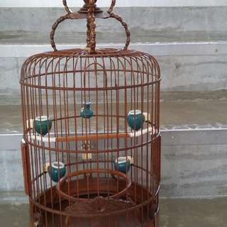 Puteh cage