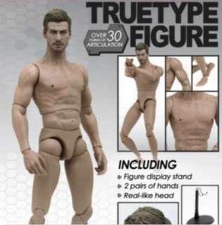 1/6 Hot Toys True Body Muscular Body TTM-19 TTM19 Brand New