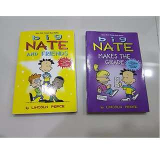 big NATE story book