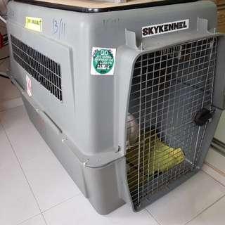 Sturdy & Big Pet Carrier (XL)
