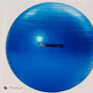 50cm Exercise Ball