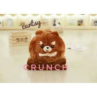 2in1 Crunch Pomeranian Plushie Pillow  with Blanket