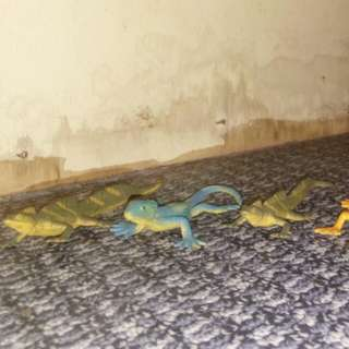 Lizard Bundle#1