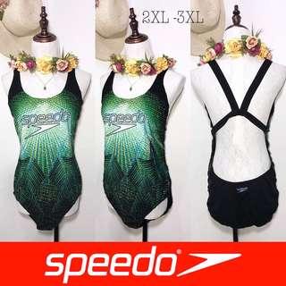 Branded Plussize Speedo One Piece Sporty Swimsuit FO72