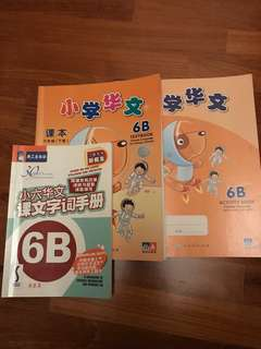 6 B Chinese Textbook, Workbook & Handbook