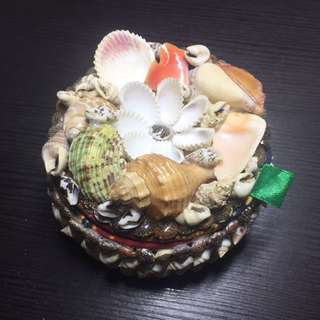Seashell designed container