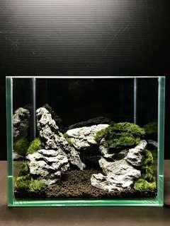 Fish Tank [Sold]
