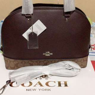 Coach dome bag