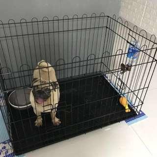 Dog cage playpen