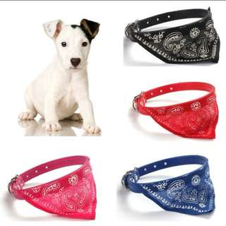 Cat And Dog bandana collar