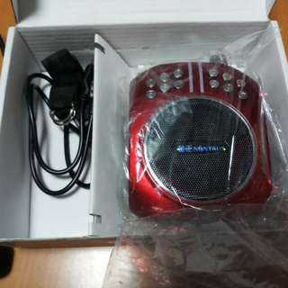 Portable amplifier with mic
