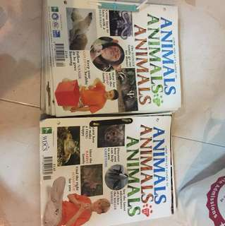 Animal magazines , Fun to read for kids
