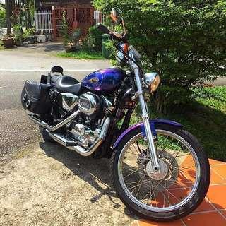 Harley Davidson Sportster Custom XL1200C