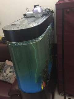 子彈型魚缸