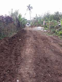 Lot for sale in Amadeo Cavite Near Tagaytay City