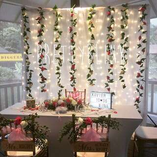 [RENTAL] Fairylight Backdrop/ Photobooth💕✨🎉😍