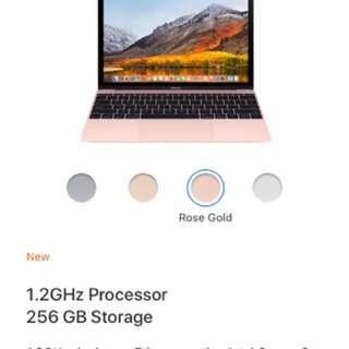 Rose Gold MacBook