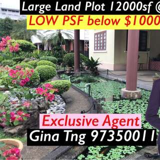 Large Land Plot 12000sf Heritage house