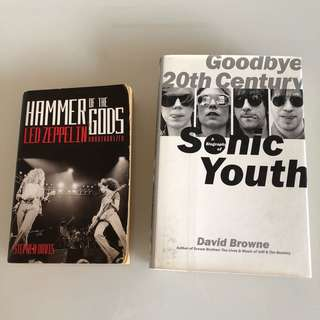 Led Zeppelin & Sonic Youth Biography
