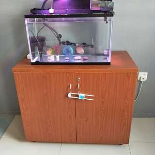 Discus, 2 Feet fish tank with everything in