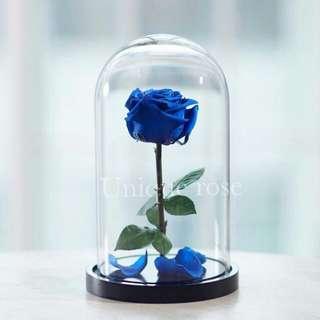 Roses 😍