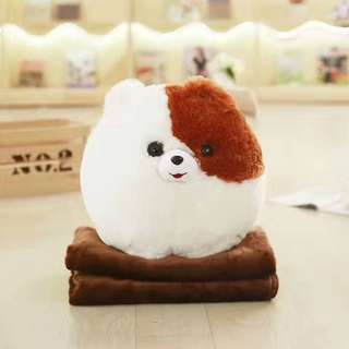 Cute Pomeranian Dog Puppy  With Blanket For Travel (Kisses)