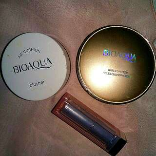 Take all bioaqua bb chusion
