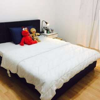 Bukit Timah Room for Rent