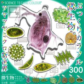 {Feb Gacha PO} Science Technicolor microorganism acrylic mascot サイエンステクニカラー 微生物アクリルマスコット 8pcs set