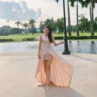 Rose Gold (Champagne Pink) Dress DND